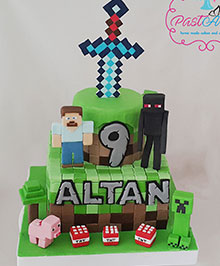 Mine Craft Altan